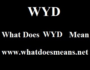 What Does WYD Mean
