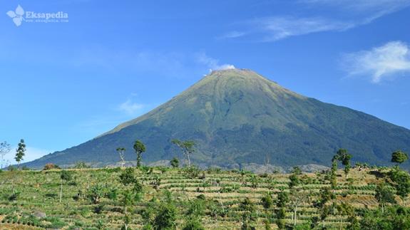Gunung Sindoro Dari Petarangan