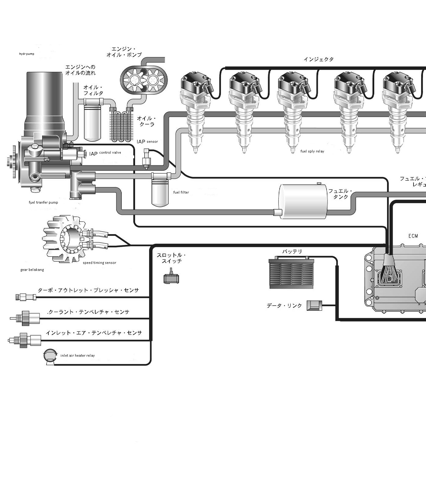 caterpillar 3176 engine diagram