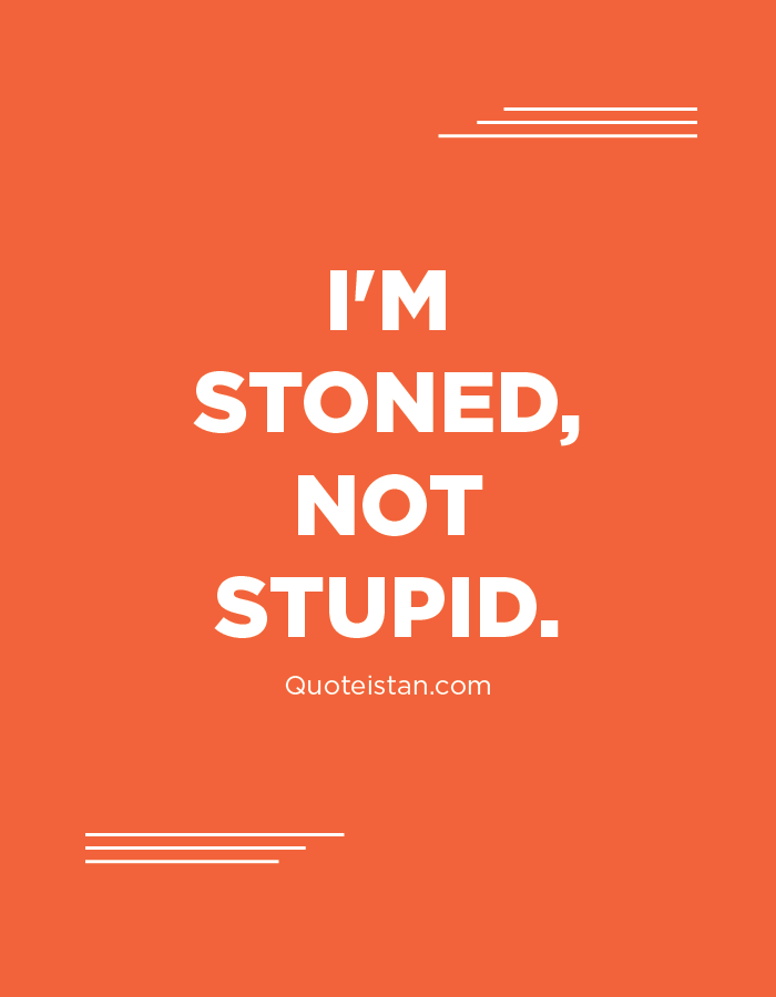 I'm stoned, not stupid.