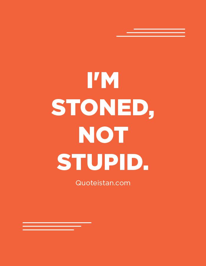 I'm stoned, not stupid.