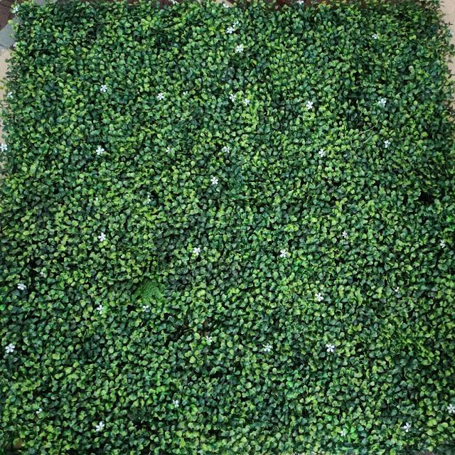 شركة انشاء ملاعب بالفيوم | انشاء ملاعب عشب صناعي بالفيوم