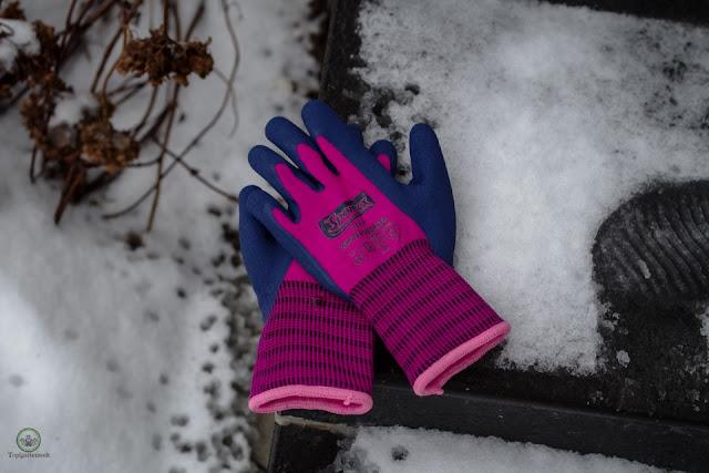 Schutzhandschuhe für den Garten Spontex Winter Worker - Gartenblog Topfgartenwelt