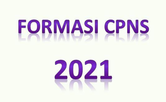 Rencana Formasi CPNS 2021 untuk Semua Instansi Pusat dan Daerah