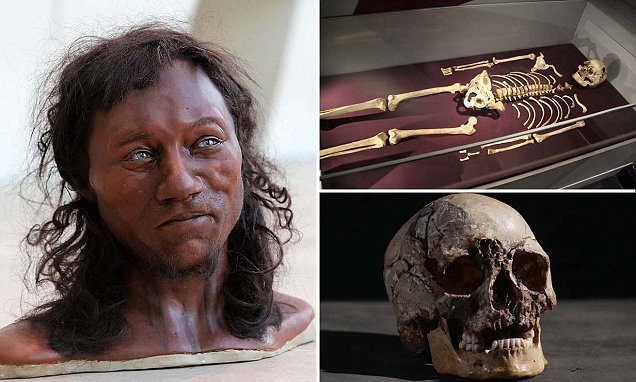 Most recent reconstruction of the Cheddar man