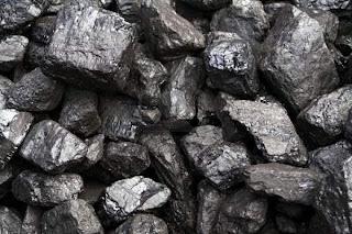 Carbon y economia