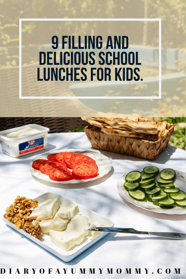 Pre made school lunch ideas.