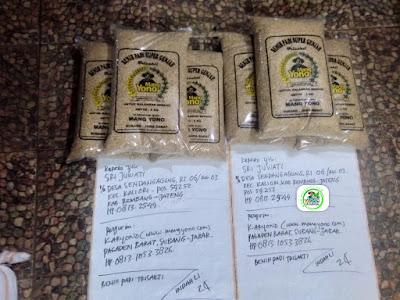 Benih padi yang dibeli SRI JUWATI Rembang, Jateng Ke-2 (Sebelum packing karung ).