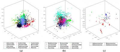 COVID-19 Genome Mapped
