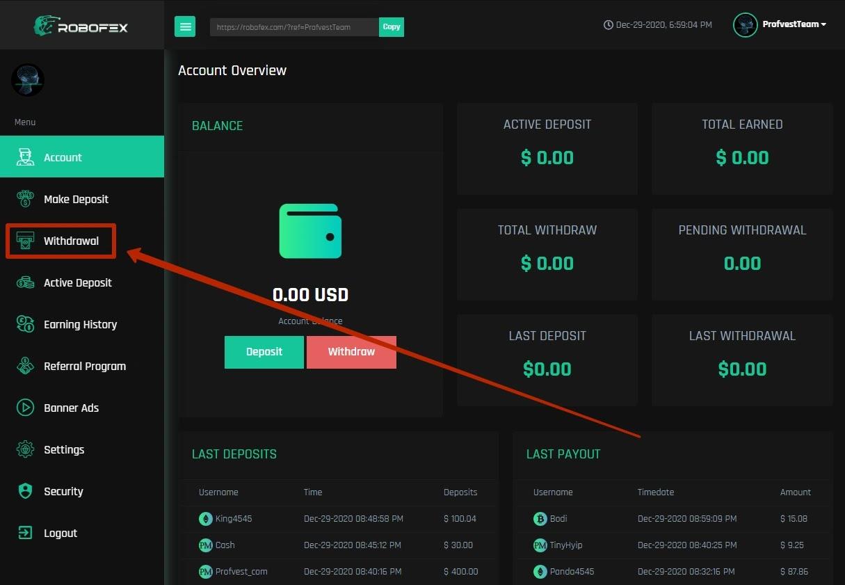 Вывод средств в Robofex
