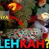 Bolehkah Menaruh Batu, Mainan dan Tanaman Hias di Aquarium Ikan Mas Koki? 🤔