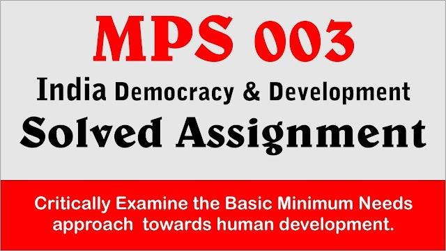 Critically Examine the Basic Minimum Needs approach towards human development.