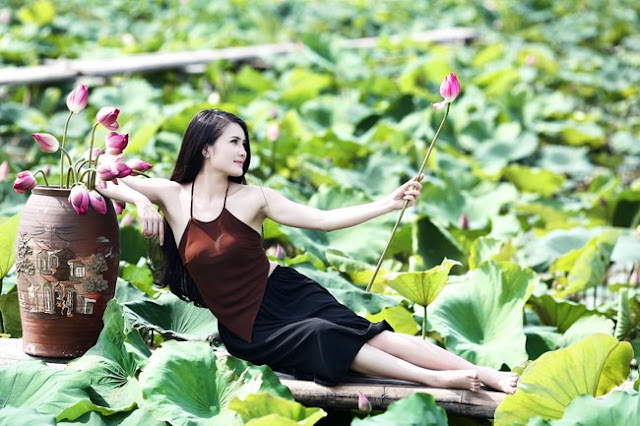 udic Hanoi West Lake - Attractions - Vietnam - West Lake Hanoi cafe, bicycle, Lotus Beauty Girl