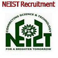 North East Institute of Science & Technology jobs 2019