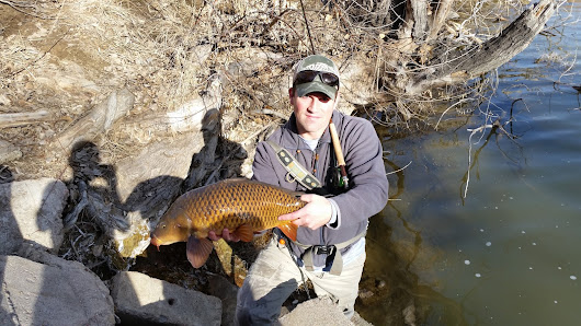 Catching carp on the fly in the winter? It just can't be true