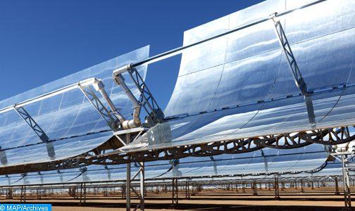 أي دور للاقتصاد الأخضر ضمن خطة إعادة الإنعاش ؟
