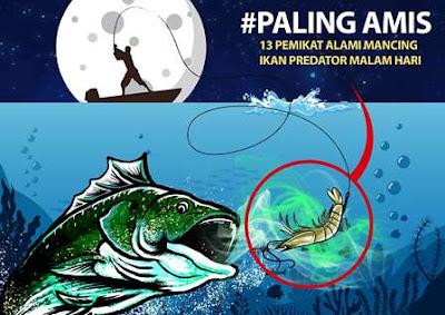Umpan untuk memancing ikan laut saat malam hari.jpeg