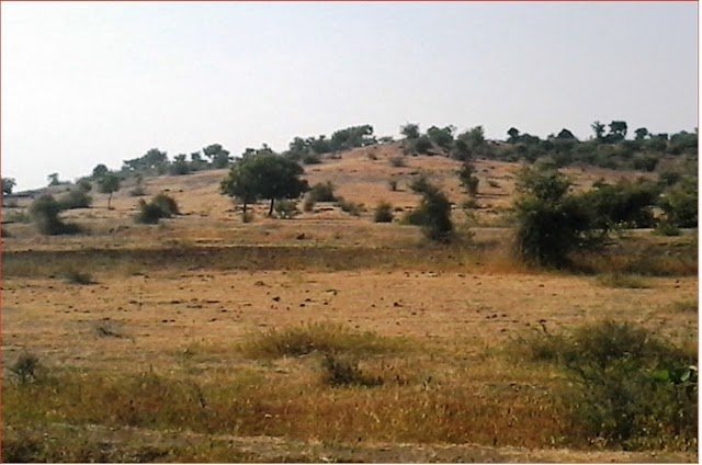 Sustainable Watershed Development (A Case Study of Semi-arid Region in Maharashtra State of India)