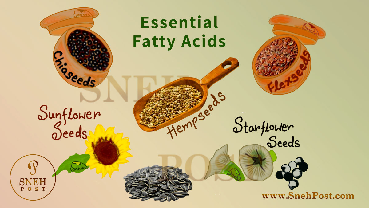 Essential Fatty Acids: Needful yet underrated fat nutrition rich foods illustration by sneha: EFA rich food sources like flaxseed, chiaseed, hempseed, sunflower seed, starflower seed