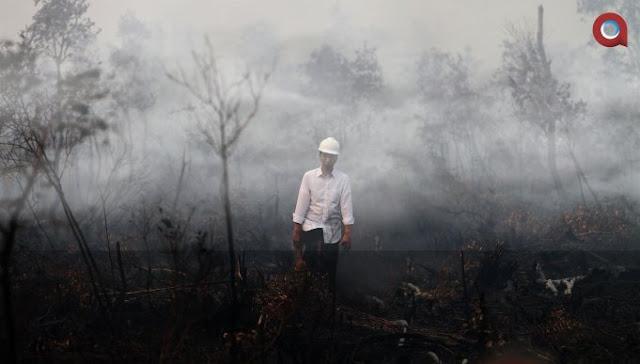 Jokowi Divonis Melawan Hukum dalam Kasus Kebakaran Hutan