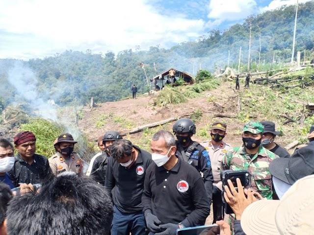 Polri Musnahkan 7 Haktare Ladang Ganja Di Gunung Lauser Dan Sita 592 Kg Ganja Kering