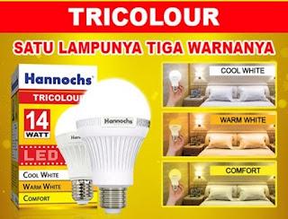 Hannochs Tri colour