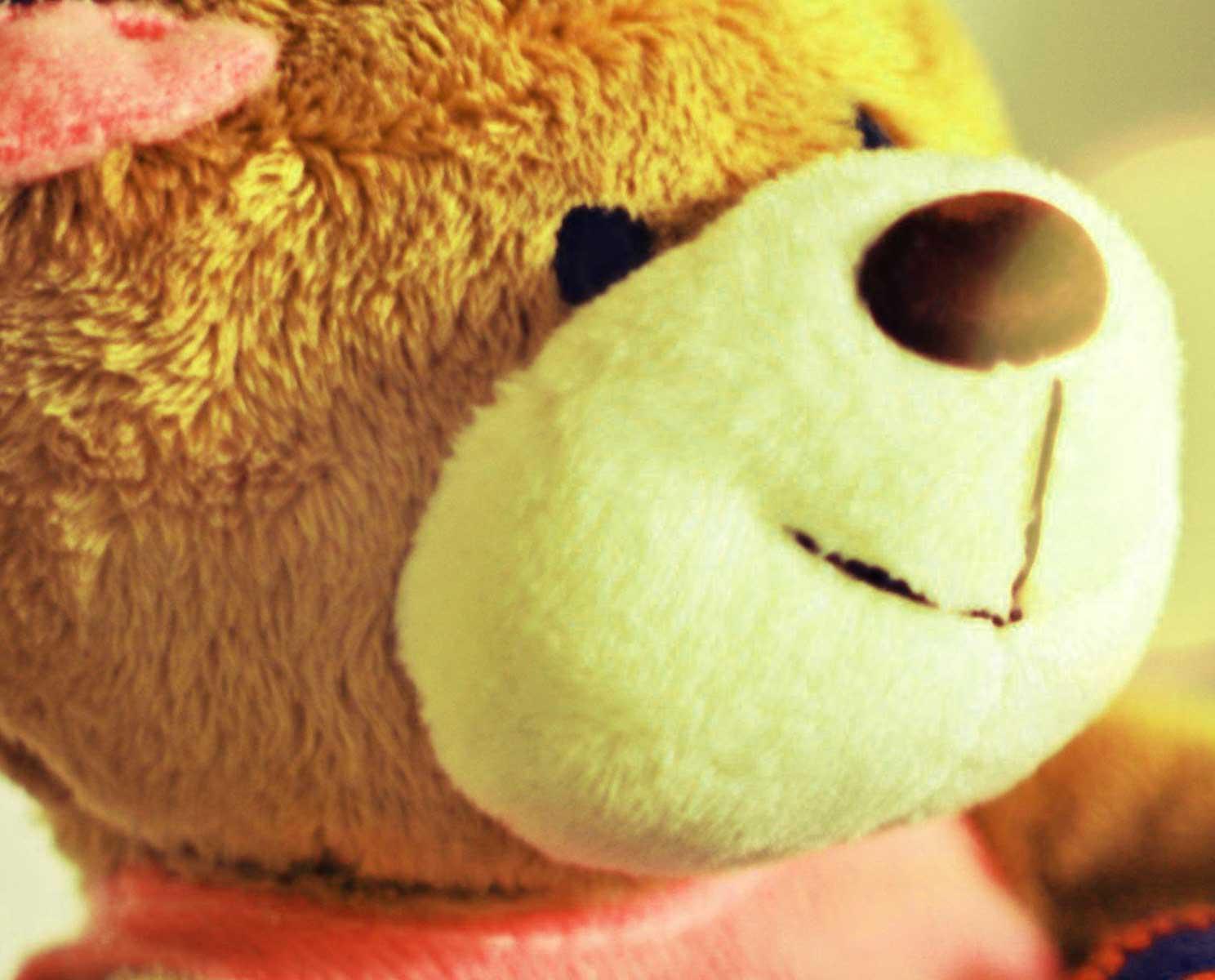 Teddy%2BBear%2BImages%2BPics%2BHD1