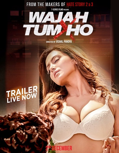 Wajah Tum Ho Movie Download HD MP4, MKV (2016)