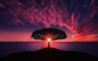 Gaya Hidup yang Diajarkan Rasulullah ﷺ