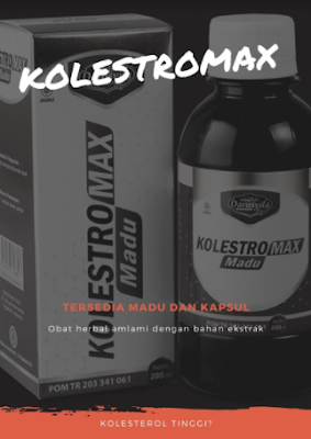 http://kolestromax.com/
