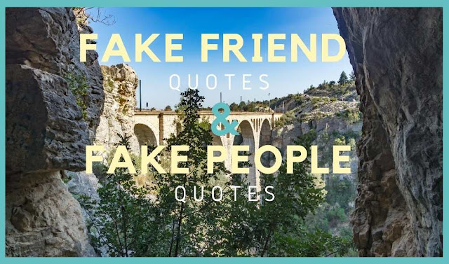 70 Fake Friends Quotes and Fake People Quotes