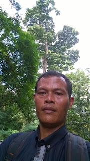 Pusat Riset Konservasi Hutan Kota