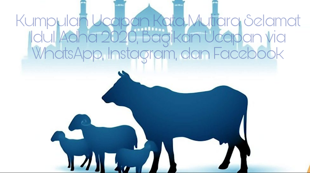 Kumpulan Ucapan Kata Mutiara Selamat Idul Adha 2020, Bagikan Ucapan via WhatsApp, Instagram, dam Facebook