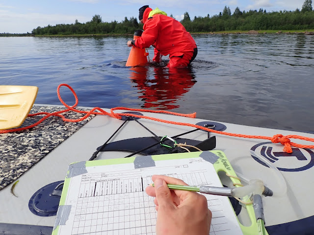 Pelastautumispukuun pukeutunut meribiologi käyttää vesikiikaria ja toinen kirjaa havaintoja ylös sup-laudan päällä.
