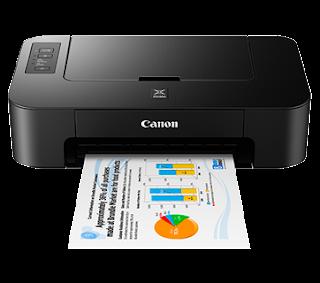 printer ts207