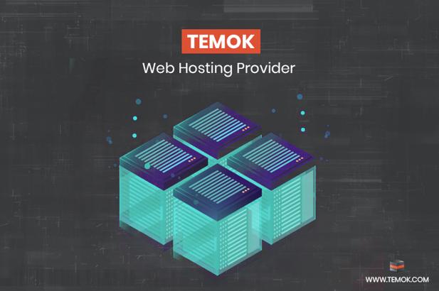 Review: Temok Web Hosting Services