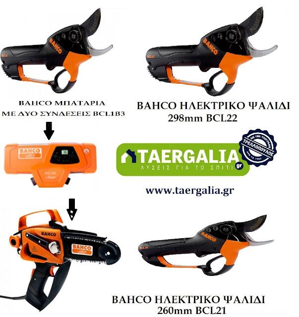 https://www.taergalia.gr/tags/bacho