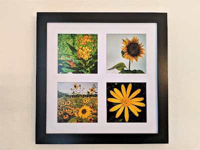 Yellow Flowers Tetraptych by Citysqwirl