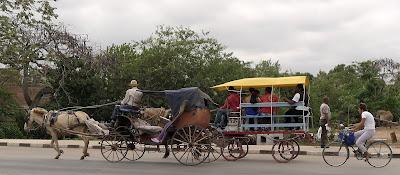 Zwei Pferdefuhrwerke und ein Radfahrer fahren zum Markt.
