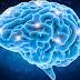 Waspada ! Ternyata tak Hanya Kelamin, Infeksi Sifilis Juga Menyerang Otak