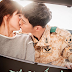 10 Reasons to Watch Descendants Of The Sun
