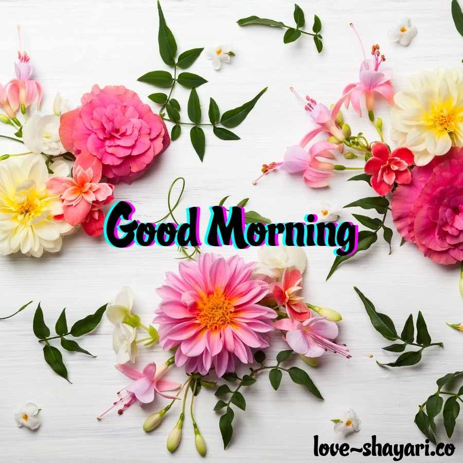 flower good morning