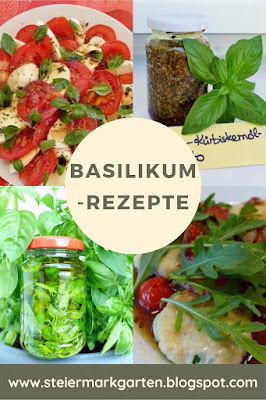 Basilikum-Rezepte-Pin-Steiermarkgarten