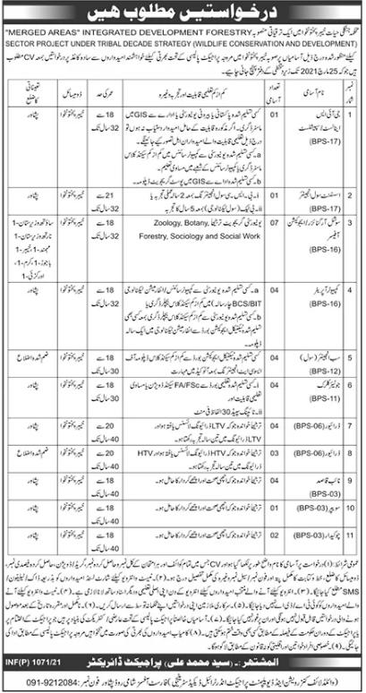 Wildlife Division Jobs 2021 For Management Staff in Peshawar KPK