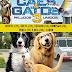 """[News] Aventura para toda a família """"Como cães e gatos 3: Peludos unido!"""" estreia nesta semana no Alpha Cine Drive-In"""