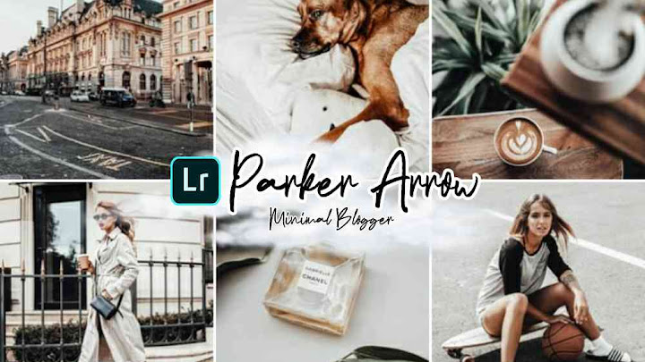 Free Download Preset Parker Arrow - Minimal Blogger Lightroom