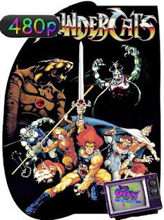 Thundercats Temporada 1,2,3,4,5 (1985) [480p] [Latino] [GoogleDrive] [RangerRojo]