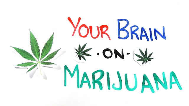 https://www.lazoi.com/Member/ViewArticle?A_ID=264&AH=Marijuana+and+its+effects+on+the+brain