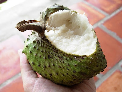 Soursop Juice for Cancer Treatment