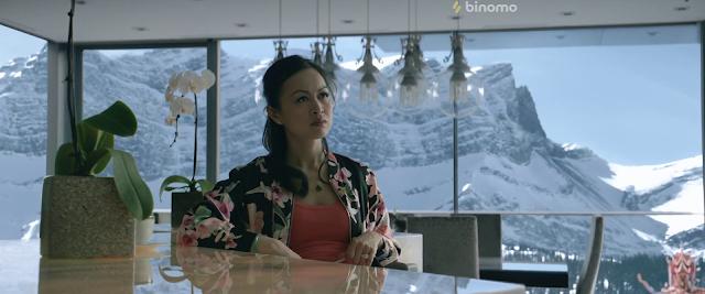 Cold Pursuit 2019 Dual Audio Hindi [HQ Fan Dubbed] 1080p BluRay
